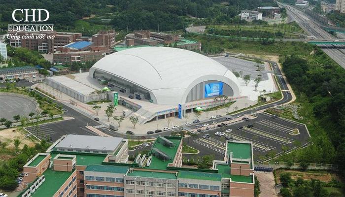 Du học Hàn Quốc - Đại học Kwangju