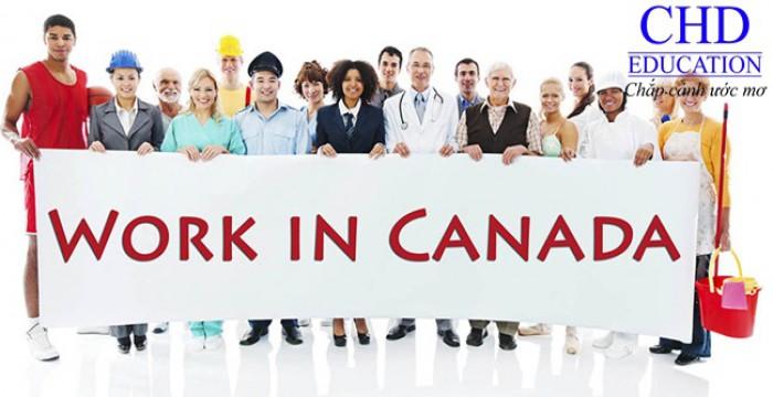 CƠ HỘI VIỆC LÀM TẠI CANADA CHO DU HỌC SINH SAU TỐT NGHIỆP