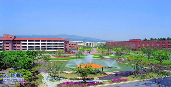 Daegu Catholic University – Trường Code Visa Top 1%