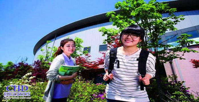 Daejeon  University - Trường Code Visa top 1%