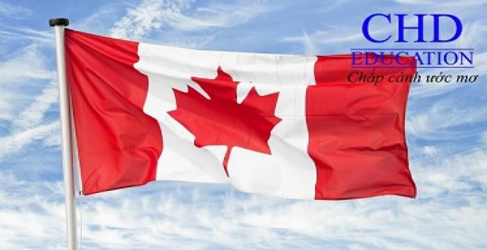 Định hướng học nghề mới tại Canada