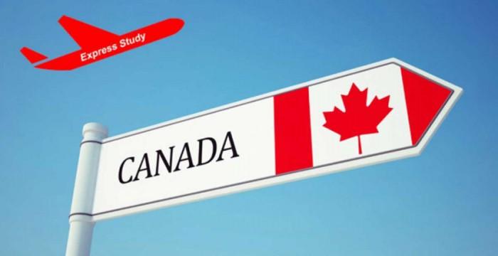 DU HỌC CANADA 2019 KHÔNG CẦN CHỨNG MINH TÀI CHÍNH VÀ CÓ CƠ HỘI ĐỂ ĐỊNH CƯ CAO