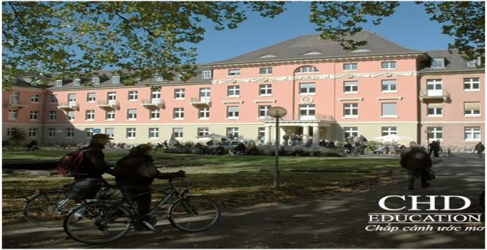 Du học Đức - Danh sách 10 trường đào tạo ngành y tại Đức (P1)
