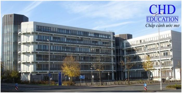 Du học Đức ngành ngôn ngữ và văn học Đức tại đại học Münster