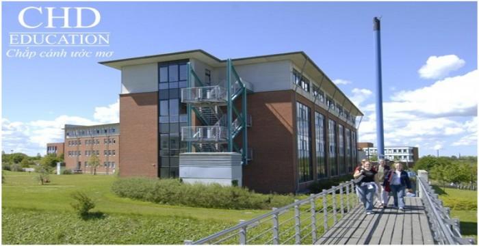 Du học Đức ngành xã hội và văn hóa châu Âu tại đại học Flensburg (EUCS)