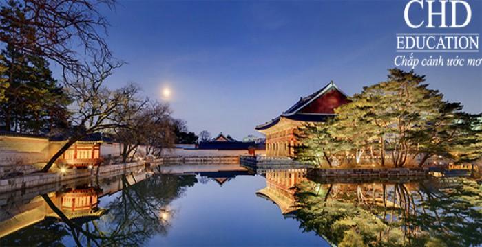 Du học Hàn Quốc tận hưởng đêm mùa thu tại Gyeongbukgung Palace