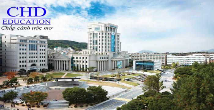 Du học Hàn Quốc - Top các trường đại học danh tiếng tại Hàn Quốc