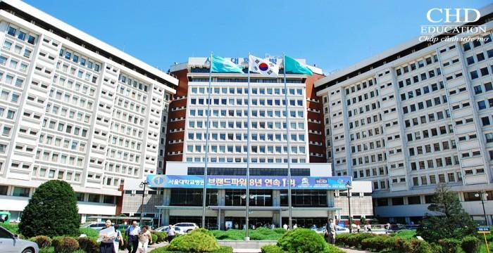 Du học Hàn Quốc - Trường Đại học quốc gia Seoul