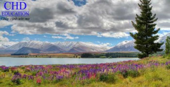 10 lý do tuyệt vời để đến New Zealand