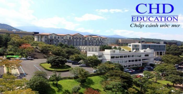 Du học New Zealand - Tập đoàn giáo dục ACG
