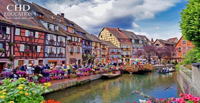 Du học Pháp chiêm ngưỡng con đường rượu vang vùng Alsace