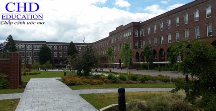 Giấc mơ du học châu Âu không khó vì đã có trường Saint Martin's Institute of Higher Education