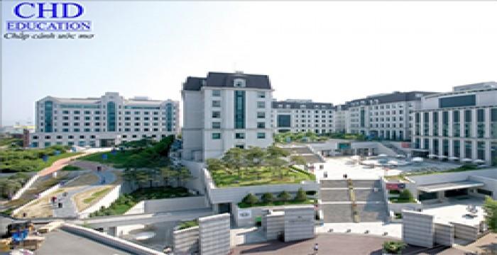 Học bổng thạc sỹ tại Đại học nữ sinh Sookmyung