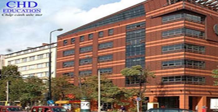Học cử nhân quản trị kinh doanh tại Đại học kinh tế Warsaw