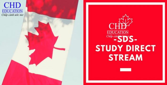 Hỏi đáp về visa SDS du học Canada mới nhất