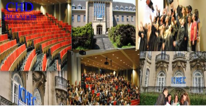 ICHEC- Bậc thầy đào tạo Kinh doanh và Quản lý quốc tế