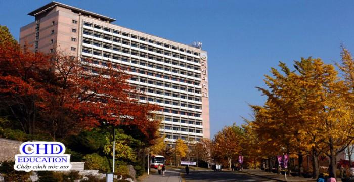 Kookmin University – Trường đại học Kookmin Hàn Quốc