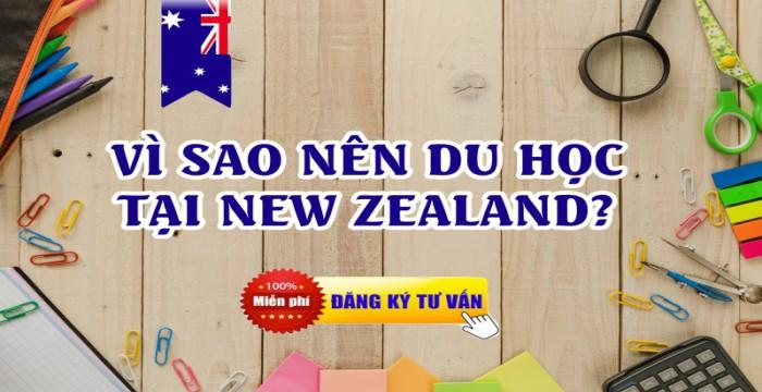 NHỮNG ĐIỂM HẤP DẪN KHI DU HỌC TẠI NEW ZEALAND