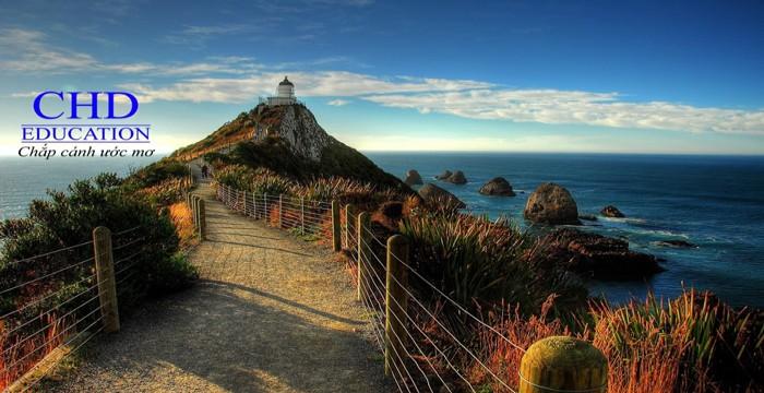 NHỮNG ĐIỀU CẦN LƯU Ý KHI SINH SỐNG TẠI NEW ZEALAND