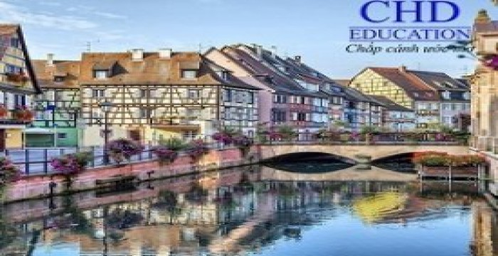 Oversea Study In Poland – Free Tuition Fee, High Quality