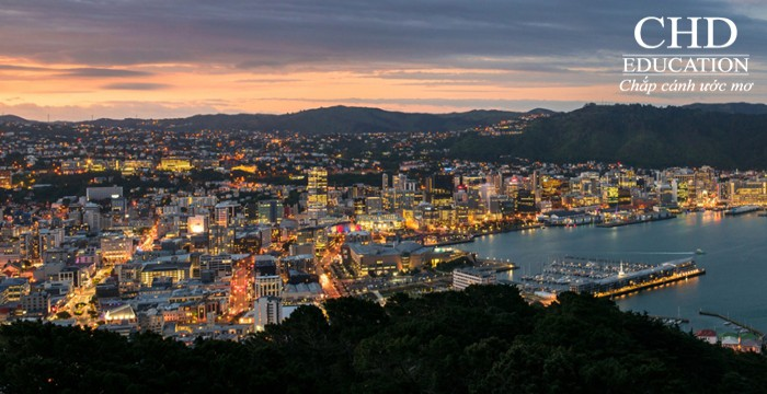 TẠI SAO NÊN DU HỌC NEW ZEALAND TẠI WELLINGTON?