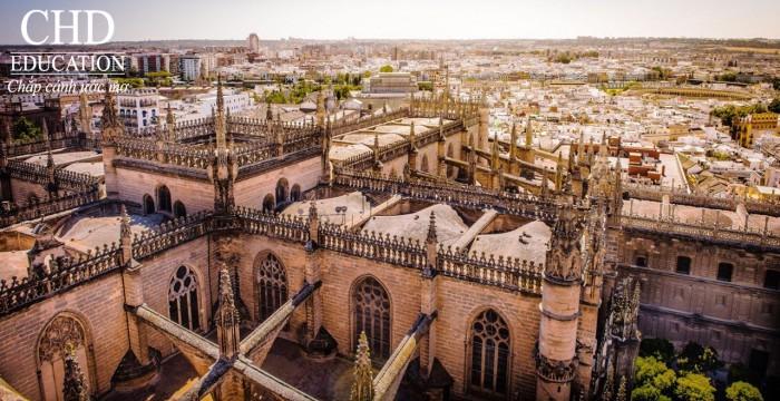 Tìm hiểu về ngành Du lịch tại trường đại học top 3 Tây Ban Nha