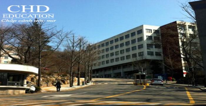 Tổng Hợp Các Trường Nhận Học Sinh Điểm Nóng Của Việt Nam Tại Hàn Quốc