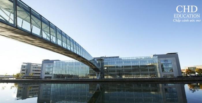 Trường Đại học Aalborg – Du học Đan Mạch