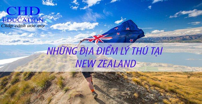 Những điểm đến mà bất kỳ du học sinh New Zealand nào cũng phải trải nghiệm