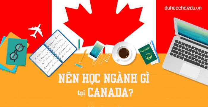 NÊN CHỌN NGÀNH GÌ KHI ĐI DU HỌC TẠI CANADA?