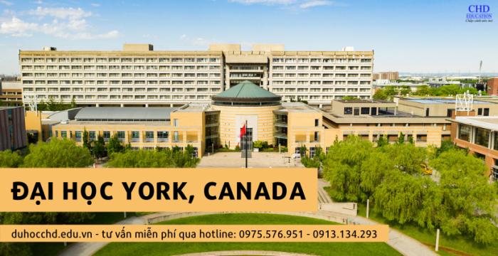 Đại học York, Bang Ontario, Du Học Canada